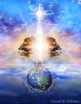 Daniel B Holeman Tree of Light