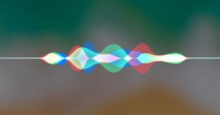 vocal wavelength